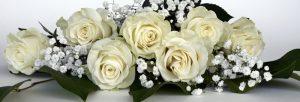 FillMyBus wedding coach hire . UK Wedding Exhibitions